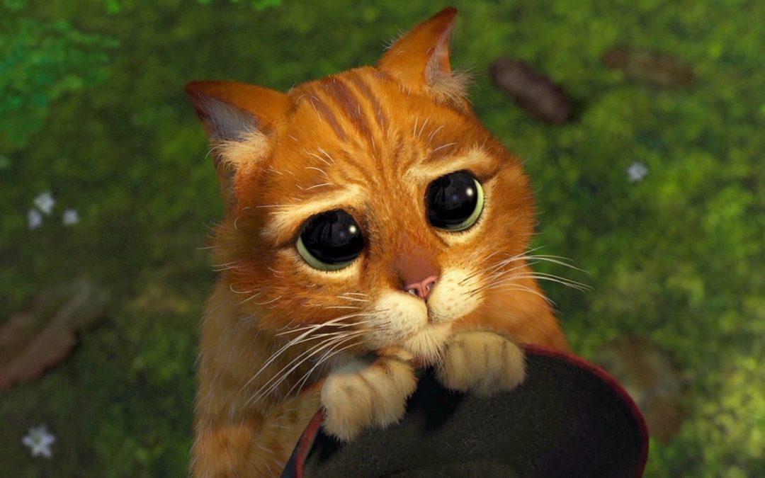Regarder des vidéos de chats au travail, est bon pour le moral !