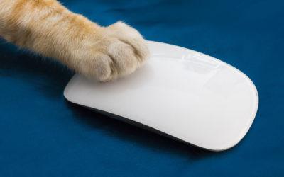 Mouseless : laissez votre souris s'évader